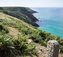 cornwall coast by Anne Scantlebury