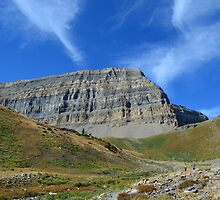 Mighty Timp! by sketchpoet