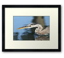 Silence of the hunter Framed Print