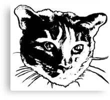 Cool Cat Head Graphic ~ black and white Canvas Print