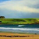 greenhills, stanley. northwest tasmania, australia by tim buckley | bodhiimages