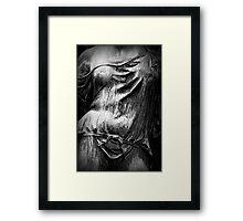Perception Framed Print