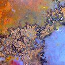 Crinkly Bits (Plume Agate) by Stephanie Bateman-Graham