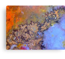 Crinkly Bits (Plume Agate) Canvas Print