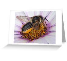 pollen bath Greeting Card