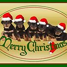 Vector Merry Christmas Rottweiler Puppies Greeting Card by taiche