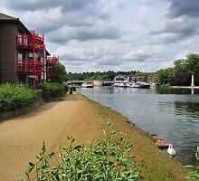Walking towards Caversham Bridge. by ronsaunders47