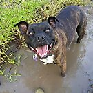 Ball + Mud = Happiness by dozzam