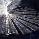 Sunlight and Shadows by John Dalkin