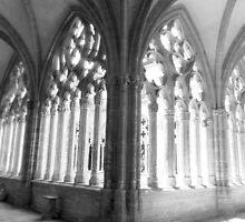 Oviedo´s Cathedral by JavierMontero
