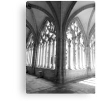 Oviedo´s Cathedral Canvas Print