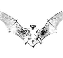 Vampire Bat Halloween Digital Engraving Image. by digitaleclectic