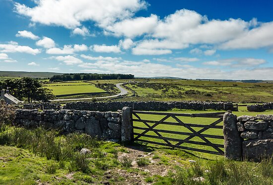 Dartmoor view from a gate by Adam North