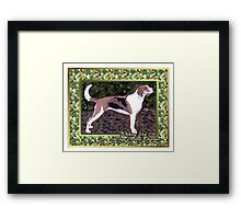 American Foxhound Dog Christmas Framed Print