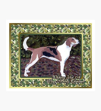 American Foxhound Dog Christmas Photographic Print