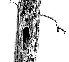 Halloween Spooky Haunted Tree. Digital Halloween Engraving Image by digitaleclectic