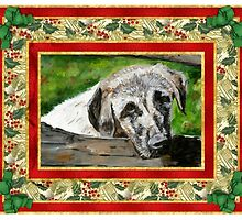 Anatolian Shepherd Christmas by Oldetimemercan
