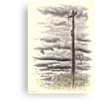 Once Powered Canvas Print
