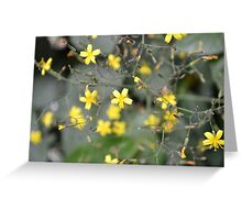 Yellow Flowers - London Weeds Greeting Card