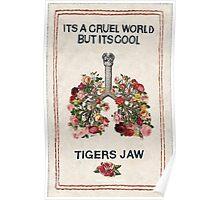 Tigers Jaw lyrics Poster
