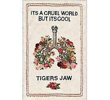 Tigers Jaw lyrics Photographic Print