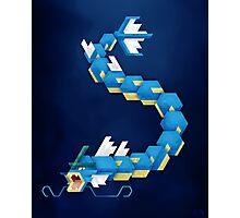 Blue Gyarados Photographic Print