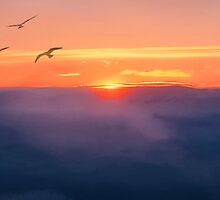 Iqaluit Sunset by billbirtch