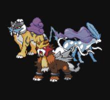 Legendary Beasts V.2 by Flaaffy