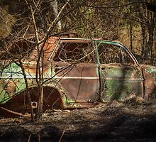 Burnt out EH Holden by Deborah McGrath