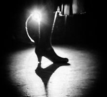 Shadows on the stage by Leo Paredes