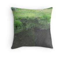 a flood Throw Pillow