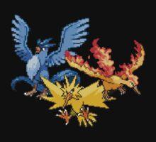 Legendary Birds V.2 by Flaaffy