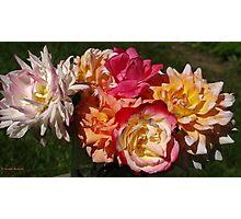 My garden treasures Photographic Print
