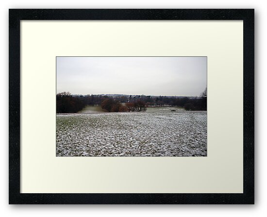 Country Fields: Winter #1 by PolydsignStudio
