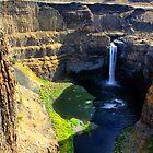 Palouse Falls 1 by Charles Kosina