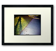 Shadow and Grass (Lomo) Framed Print