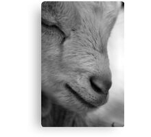 Close-up Kid in B&W Canvas Print
