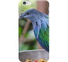 Multi Colored Poofy Bird iPhone Case/Skin