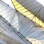 Diagonsails by Stephen Mitchell