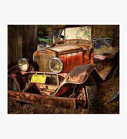 Golden Years Photographic Print