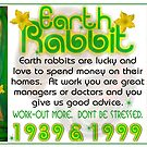 1939 1999 Chinese zodiac born in year of Earth Rabbit  by valxart by Valxart