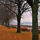 Autumn in Riga by dreamax1985