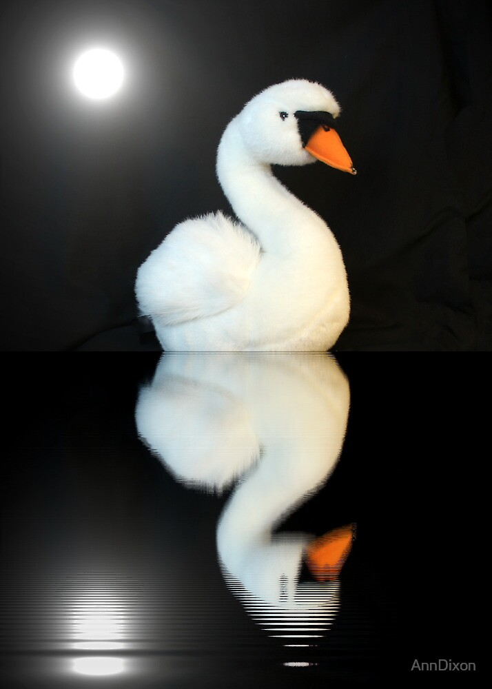 Swan Reflection and Moon by AnnDixon