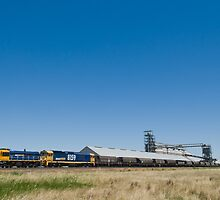 train at wheat silo by Danny Waters