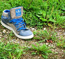 Lonely Shoe by Reilly  Taylor-MacBeth