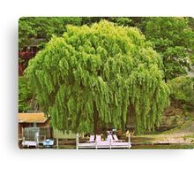 Willow Tree and Boat nature and nautical photography Canvas Print