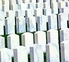Woodlawn National Cemetery military cemetery headstones by jemvistaprint