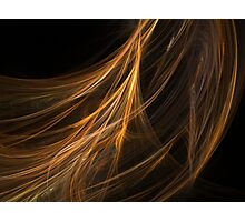 Brown Hair Fractal Photographic Print
