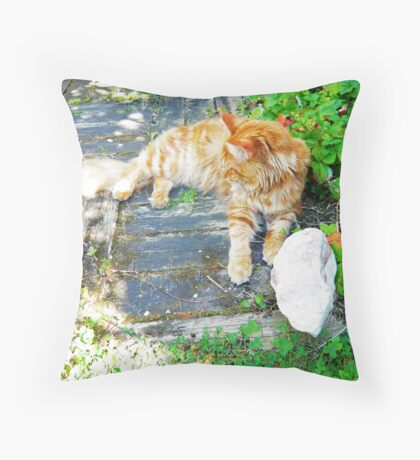 My Cat in the Sun Throw Pillow