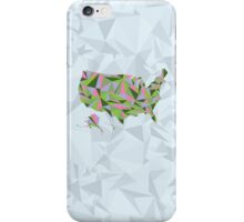 Abstract America Spring Bloom iPhone Case/Skin